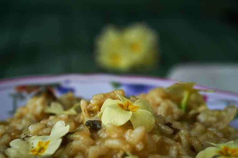 Ricetta: risotto di primule
