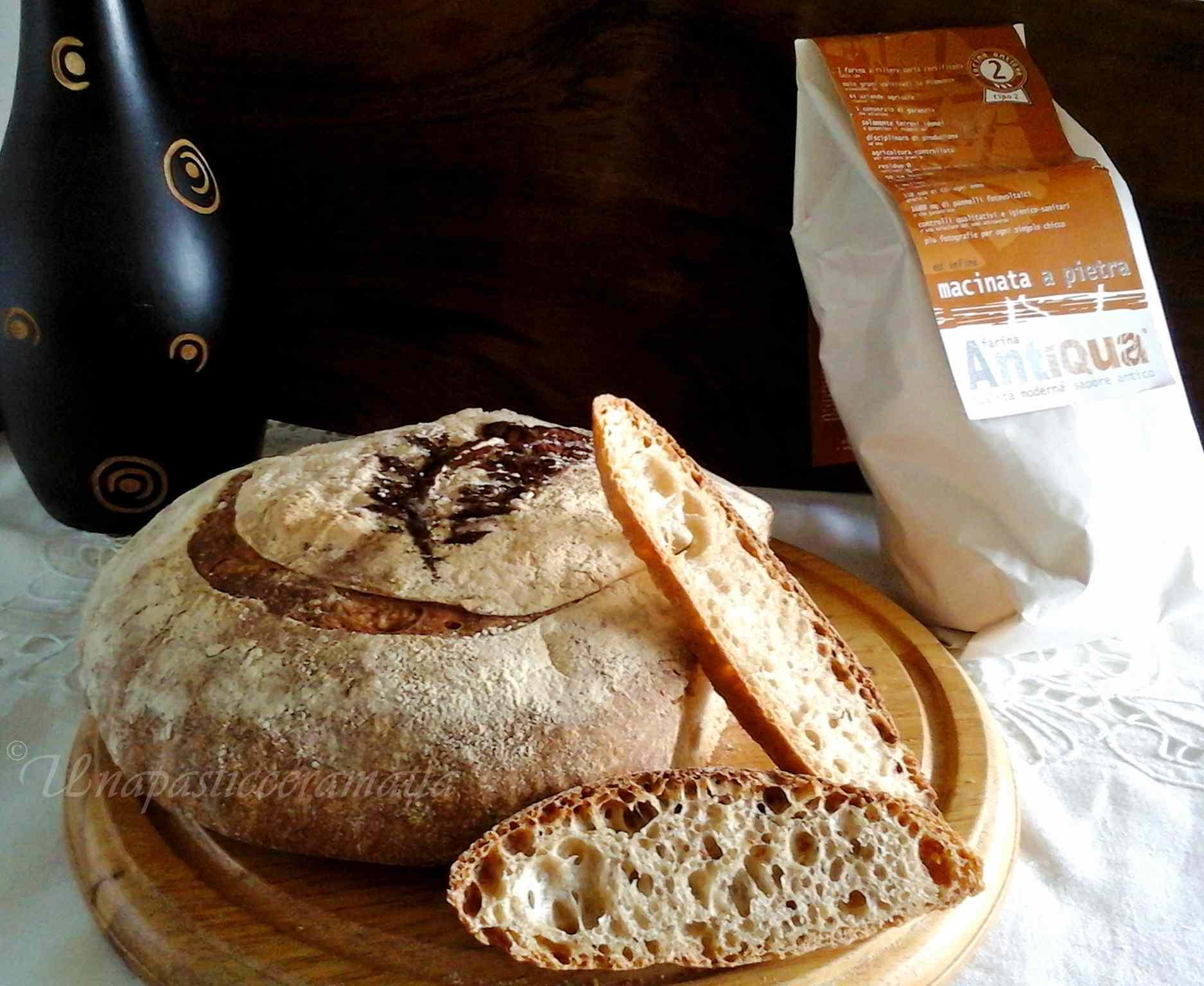 Ricetta: Pane senza impasto con lievito madre farina tipo 2