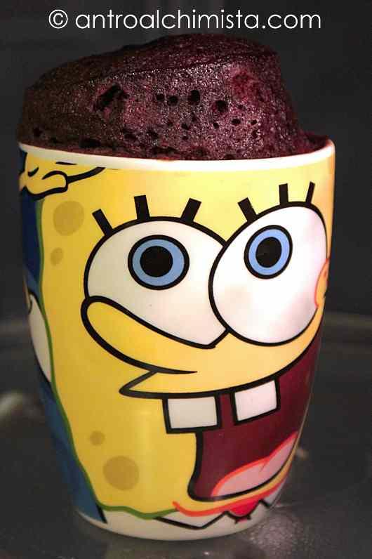 Ricetta: Coconut  Chocolate Mug Cake