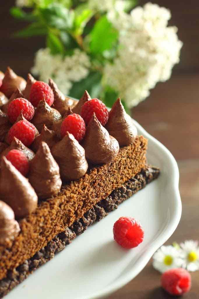cioccolato, lamponi e caradamomo new style di m. santin per \