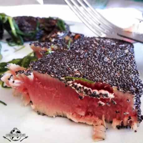 Tonno rosso, salsa teriyaki e semi di papavero