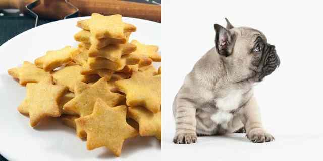 Ricetta: Biscotti per cani con farina di mais e formaggio grana